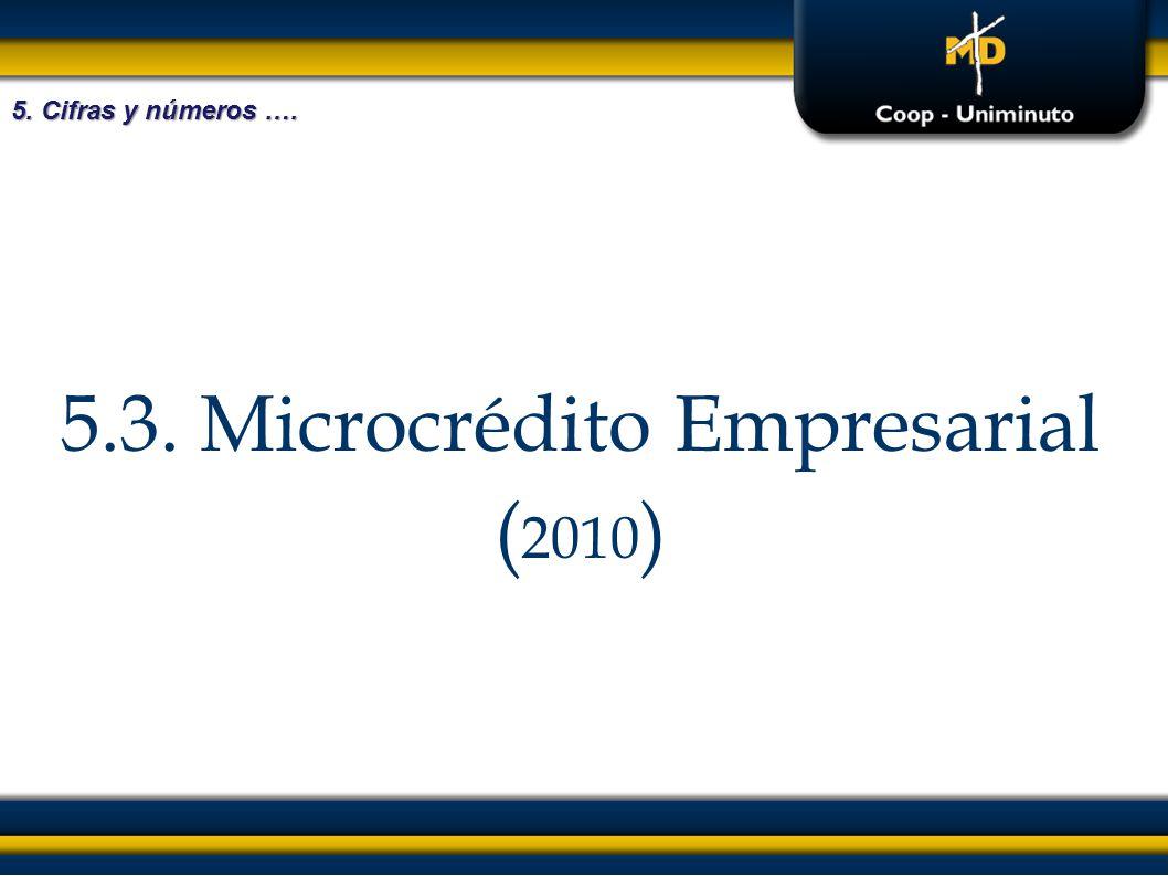 5.3. Microcrédito Empresarial ( 2010 ) 5. Cifras y números ….