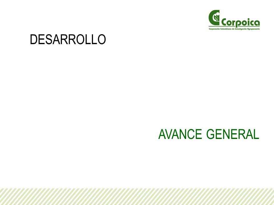 AVANCE GENERAL DESARROLLO