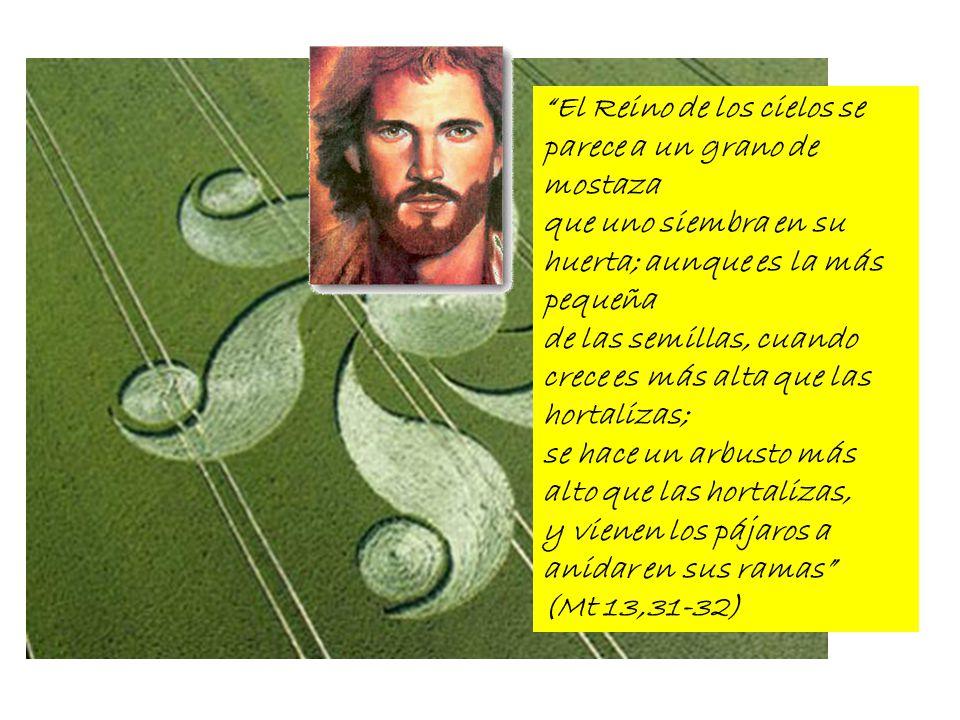 El Reino de los cielos se parece a un grano de mostaza que uno siembra en su huerta; aunque es la más pequeña de las semillas, cuando crece es más alt