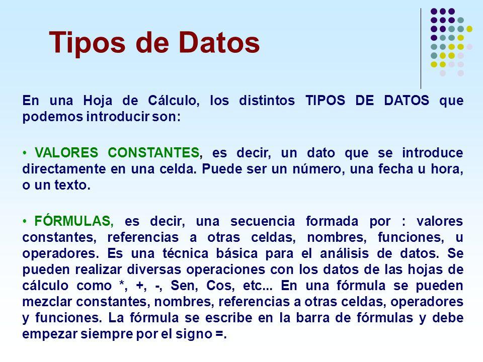 En una Hoja de Cálculo, los distintos TIPOS DE DATOS que podemos introducir son: VALORES CONSTANTES, es decir, un dato que se introduce directamente e