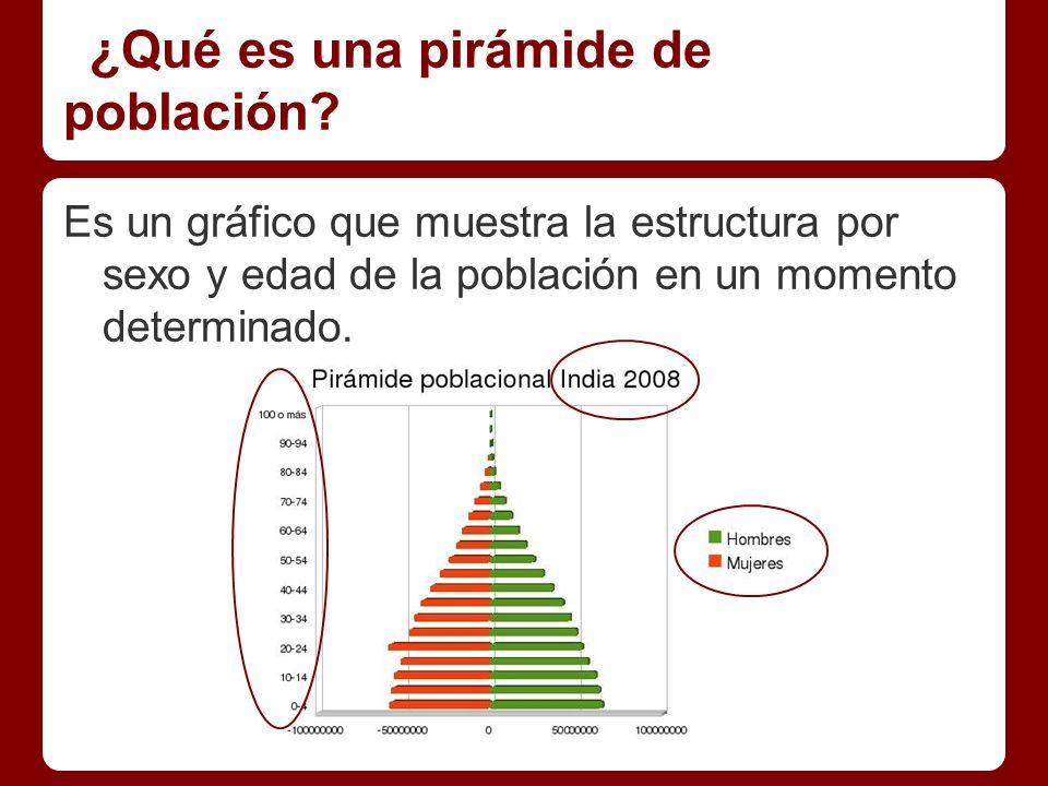 Elementos de la pirámide de población.