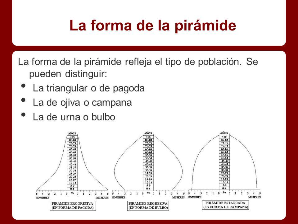 La forma de la pirámide La forma de la pirámide refleja el tipo de población.