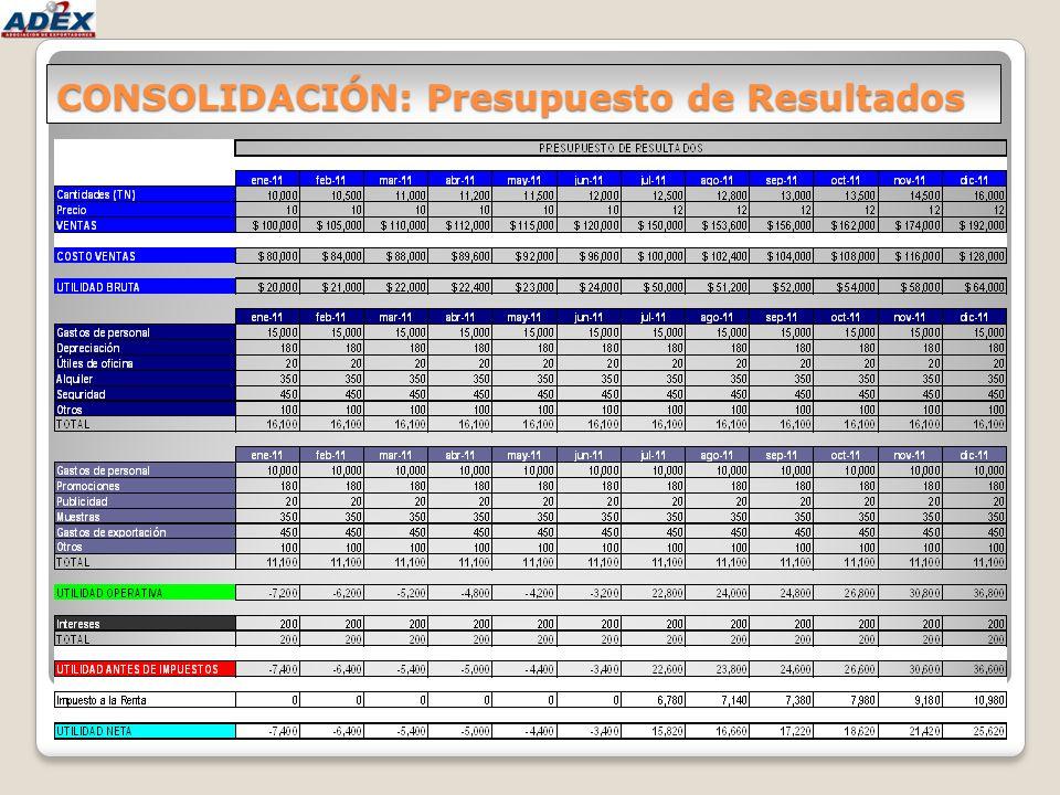 CONSOLIDACIÓN: Presupuesto de Resultados