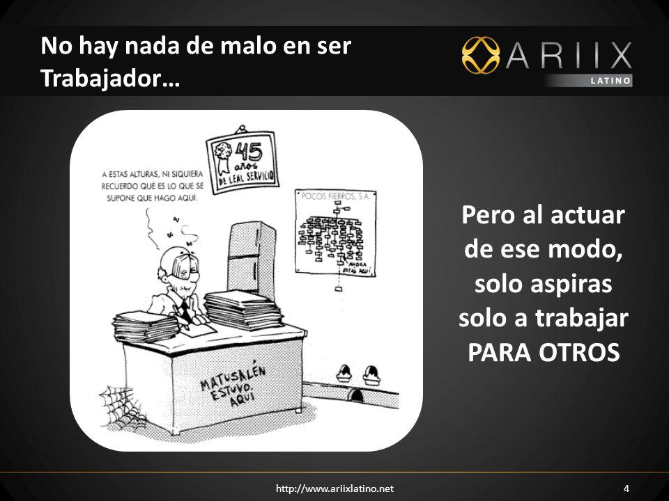 http://www.ariixlatino.net15 Cuenta con amplias certificaciones