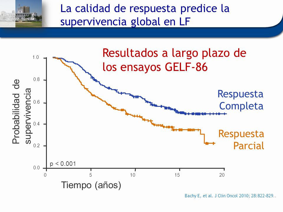 Bachy E, et al. J Clin Oncol 2010; 28:822–829.. Probabilidad de supervivencia Tiempo (años) Respuesta Completa Respuesta Parcial Resultados a largo pl