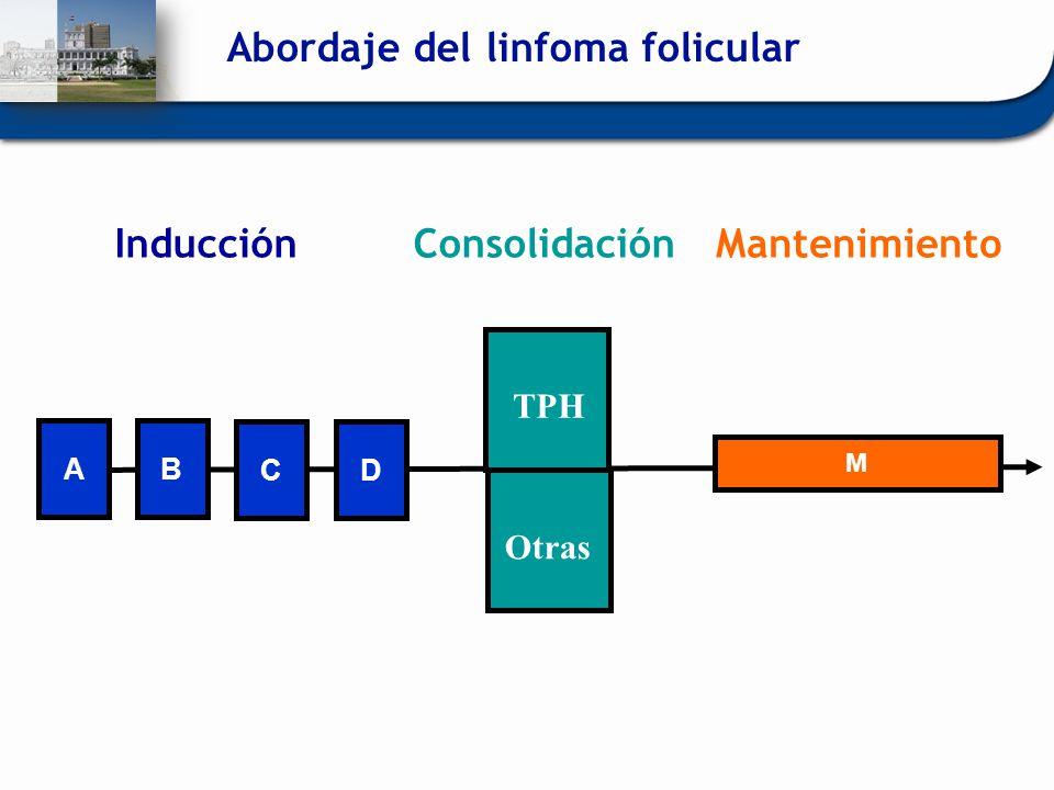 CD M MantenimientoInducción AB OtrasTPH Consolidación Abordaje del linfoma folicular