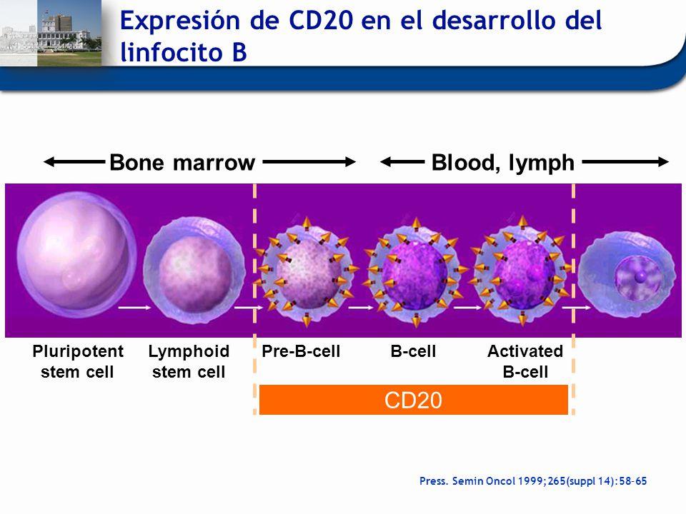 Expresión de CD20 en el desarrollo del linfocito B Pluripotent stem cell Lymphoid stem cell Pre-B-cellB-cellActivated B-cell Bone marrowBlood, lymph C