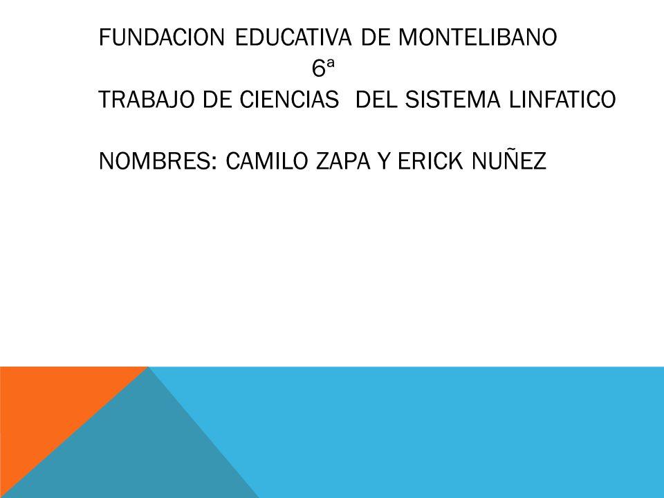 FUNDACION EDUCATIVA DE MONTELIBANO 6ª TRABAJO DE CIENCIAS DEL SISTEMA LINFATICO NOMBRES: CAMILO ZAPA Y ERICK NUÑEZ