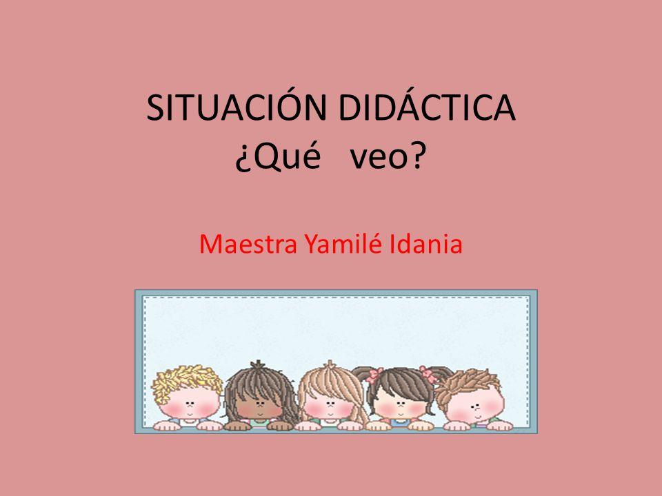 SITUACIÓN DIDÁCTICA ¿Qué veo? Maestra Yamilé Idania