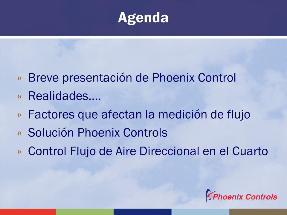 Agenda »Breve presentación de Phoenix Control »Realidades…. »Factores que afectan la medición de flujo »Solución Phoenix Controls »Control Flujo de Ai