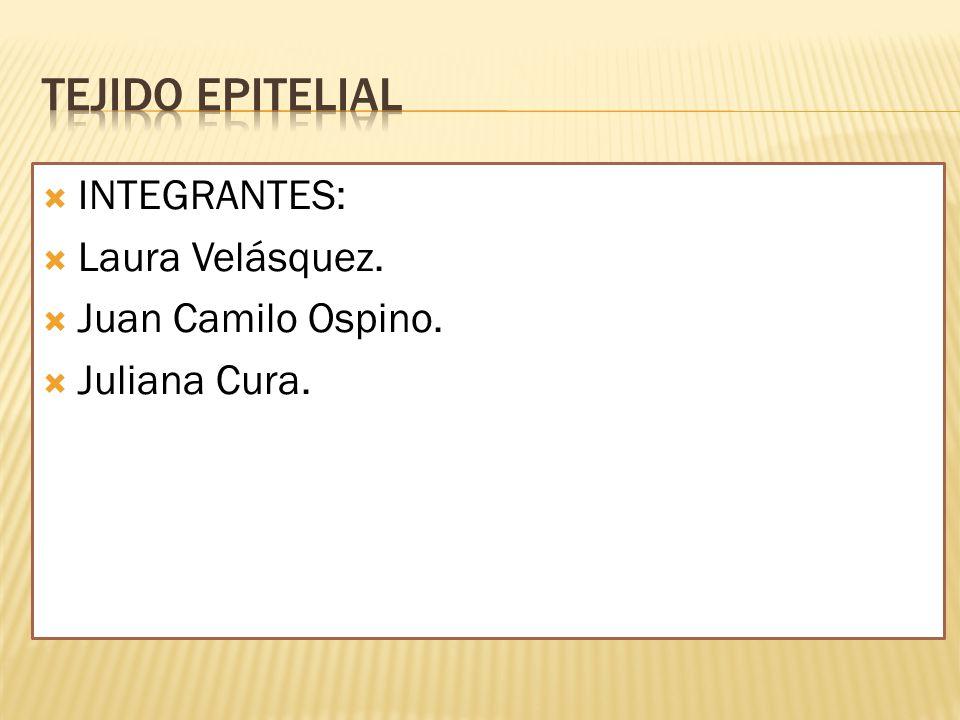 INTEGRANTES: Laura Velásquez. Juan Camilo Ospino. Juliana Cura.