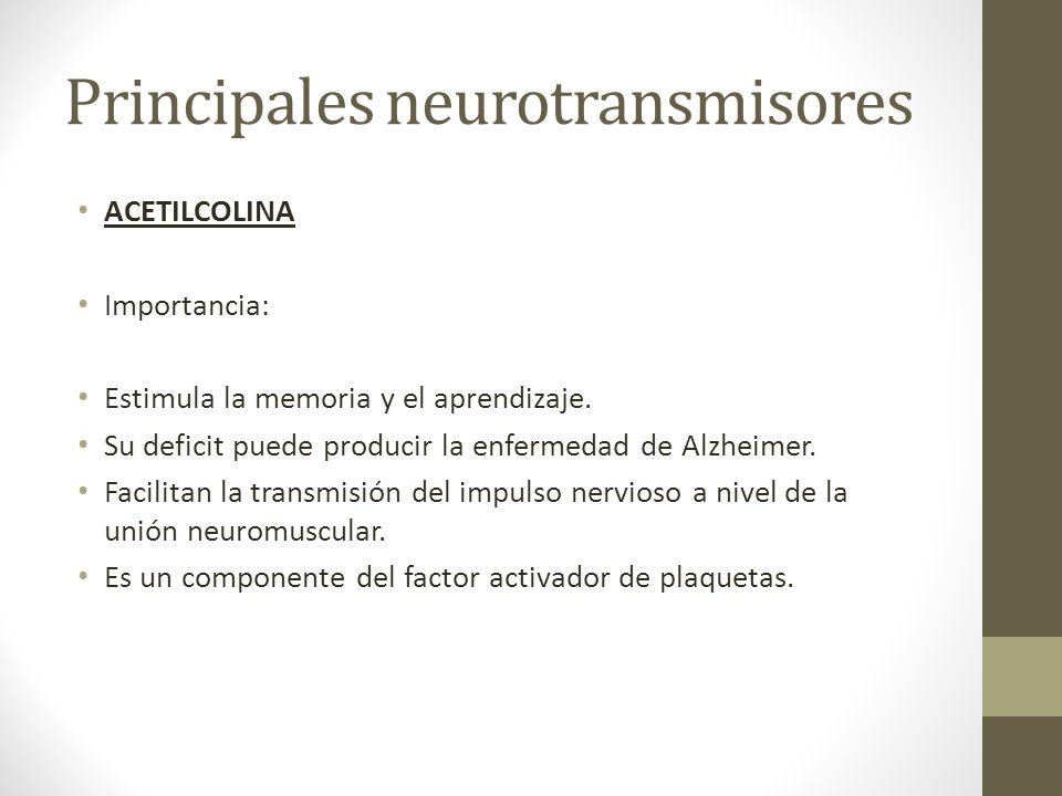Principales neurotransmisores ACETILCOLINA Importancia: Estimula la memoria y el aprendizaje. Su deficit puede producir la enfermedad de Alzheimer. Fa