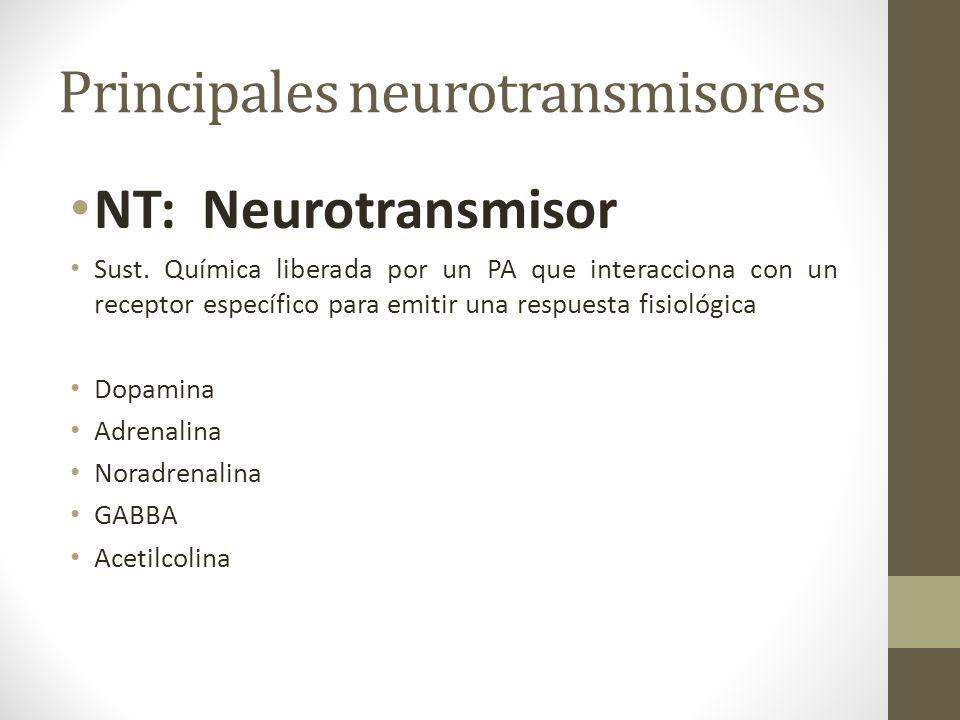 Principales neurotransmisores NT: Neurotransmisor Sust. Química liberada por un PA que interacciona con un receptor específico para emitir una respues
