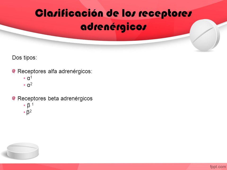 Clasificación de los receptores adrenérgicos Dos tipos: Receptores alfa adrenérgicos: α 1 α 2 Receptores beta adrenérgicos β 1 β 2