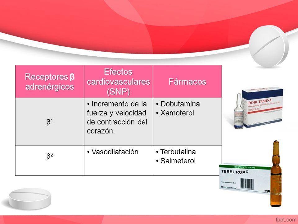 Receptores adrenérgicos Receptores β adrenérgicos Efectos cardiovasculares (SNP) Fármacos β1β1 Incremento de la fuerza y velocidad de contracción del corazón.