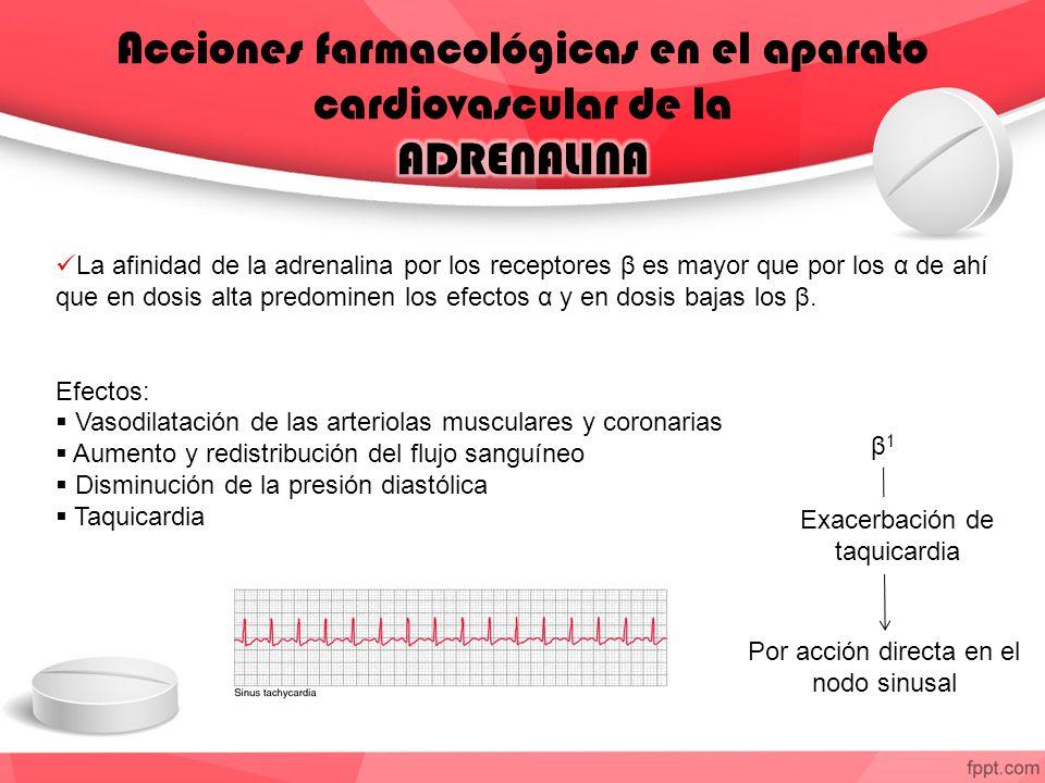 La afinidad de la adrenalina por los receptores β es mayor que por los α de ahí que en dosis alta predominen los efectos α y en dosis bajas los β. Efe