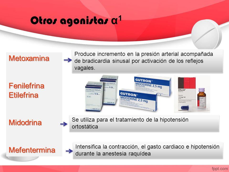 Otros agonistas α 1 MetoxaminaFenilefrinaEtilefrinaMidodrinaMefentermina Produce incremento en la presión arterial acompañada de bradicardia sinusal por activación de los reflejos vagales.