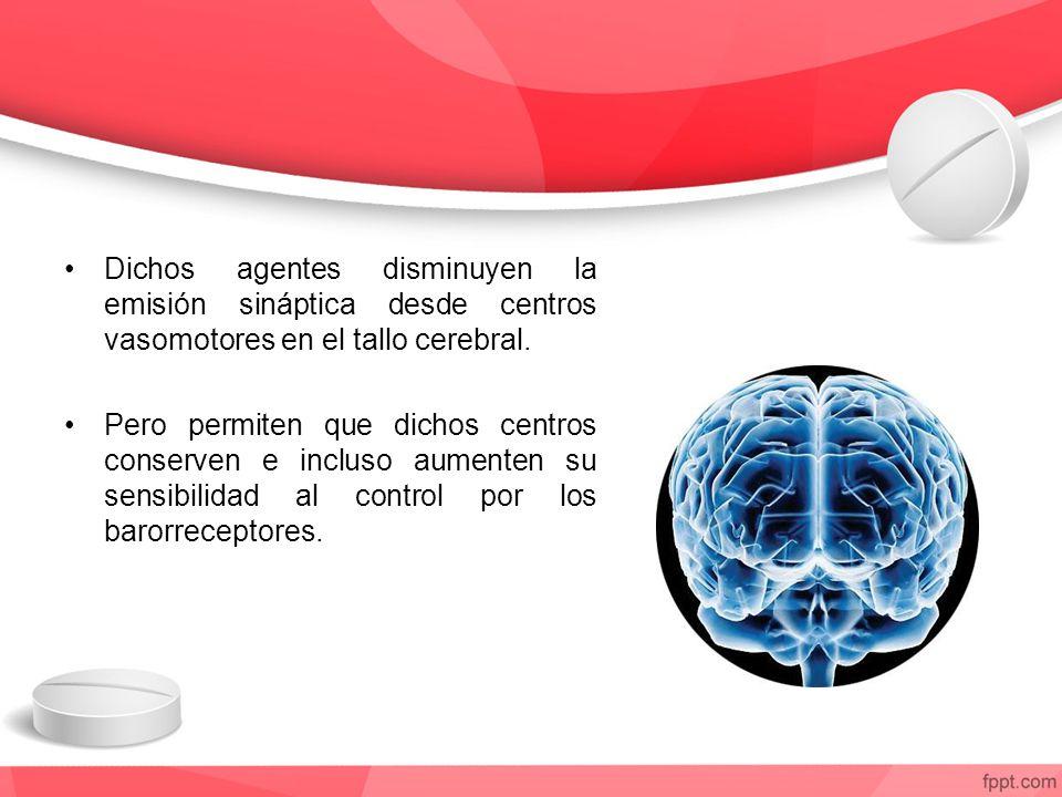 Dichos agentes disminuyen la emisión sináptica desde centros vasomotores en el tallo cerebral. Pero permiten que dichos centros conserven e incluso au
