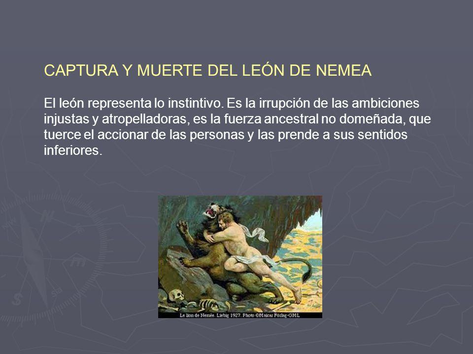 La historia de Hércules nos hace comprender los pasos y pruebas interiores que el hombre tiene que superar para lograr la trascendencia y transformaci