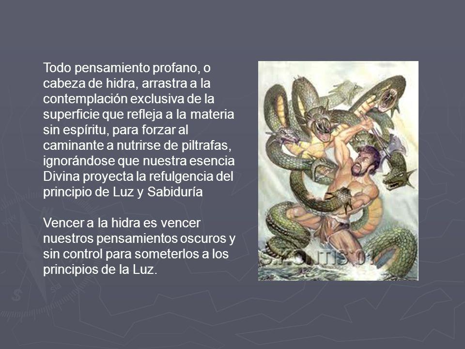 LA HIDRA DE LERNA Representa los defectos psicológicos. Que los podemos definir como los 7 pecados capitales (Ira, lujuria, gula, pereza, orgullo, env