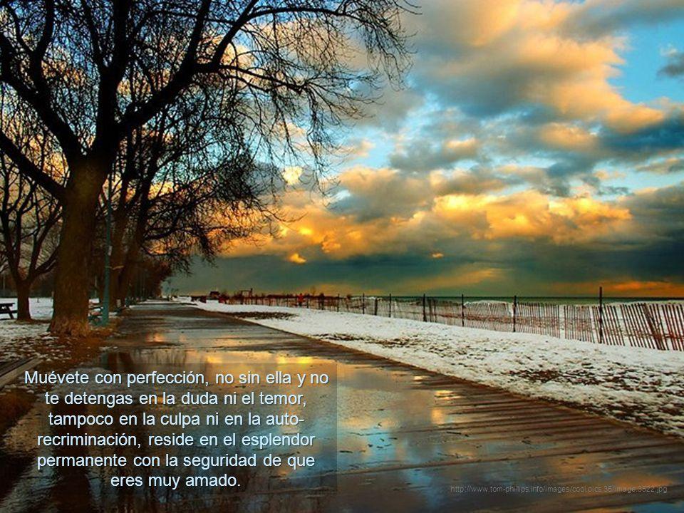Utiliza tu vida como una meditación y todos los eventos en ésta. Camina en la vigilia, no dormido. http://www.tom-phillips.info/images/cool.pics.35/im