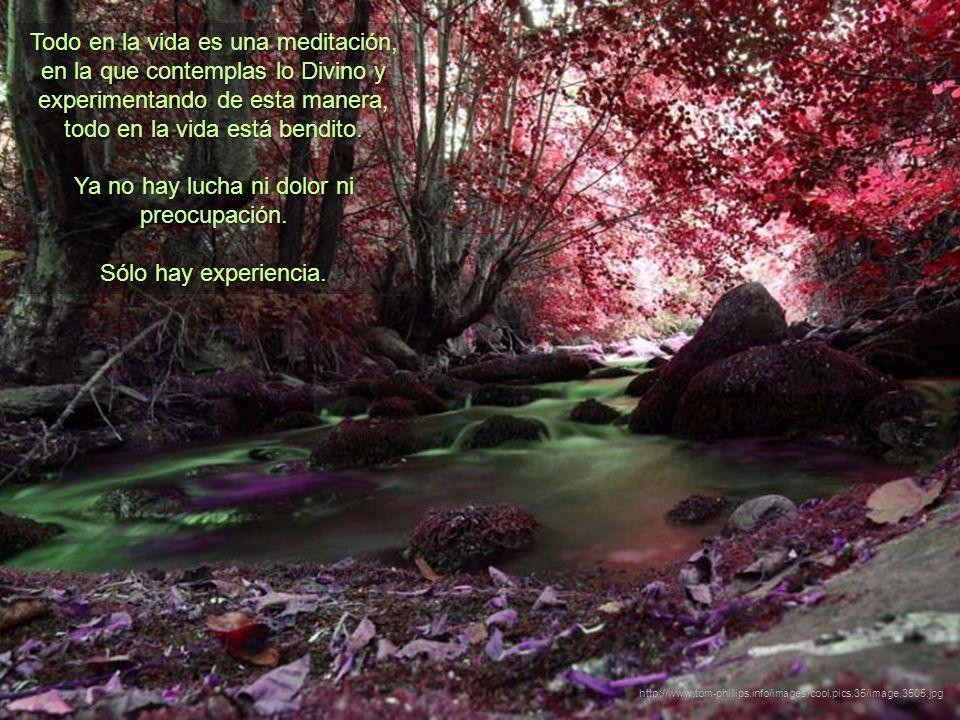 Todo en la vida es una meditación, en la que contemplas lo Divino y experimentando de esta manera, todo en la vida está bendito.