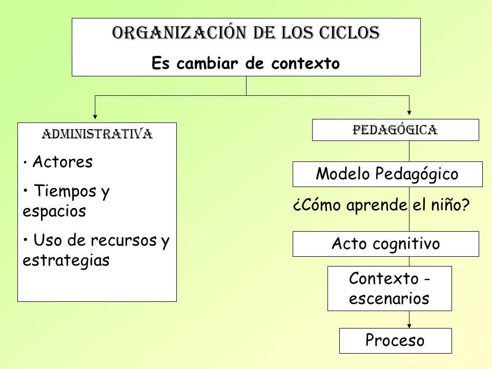 ORGANIZACIÓN de los ciclos Es cambiar de contexto ADMINISTRATIVA Actores Tiempos y espacios Uso de recursos y estrategias PEDAGÓGICA Modelo Pedagógico