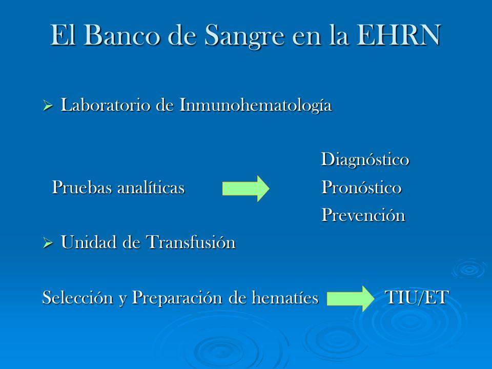 El Banco de Sangre en la EHRN Laboratorio de Inmunohematología Laboratorio de Inmunohematología Diagnóstico Diagnóstico Pruebas analíticas Pronóstico