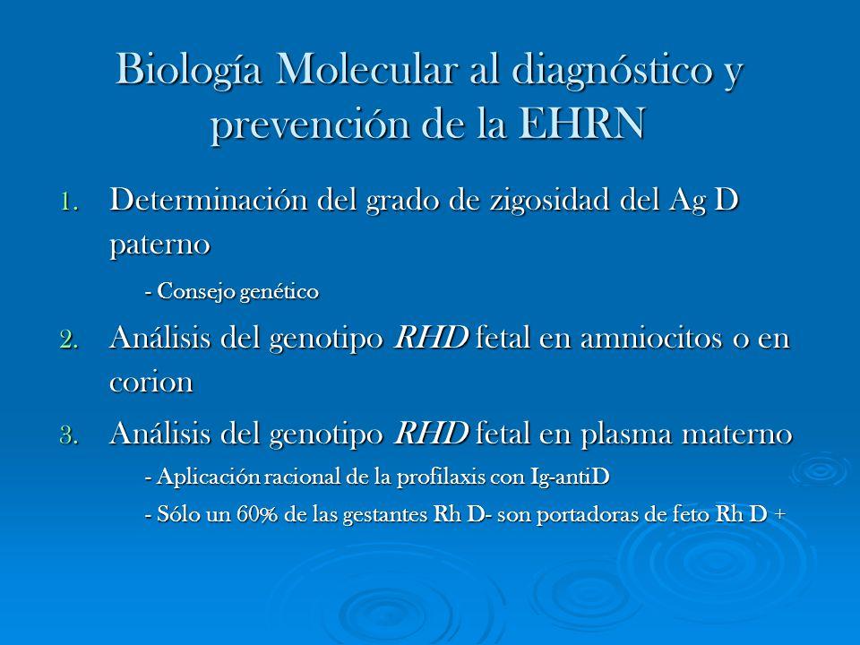 Biología Molecular al diagnóstico y prevención de la EHRN 1. Determinación del grado de zigosidad del Ag D paterno - Consejo genético - Consejo genéti