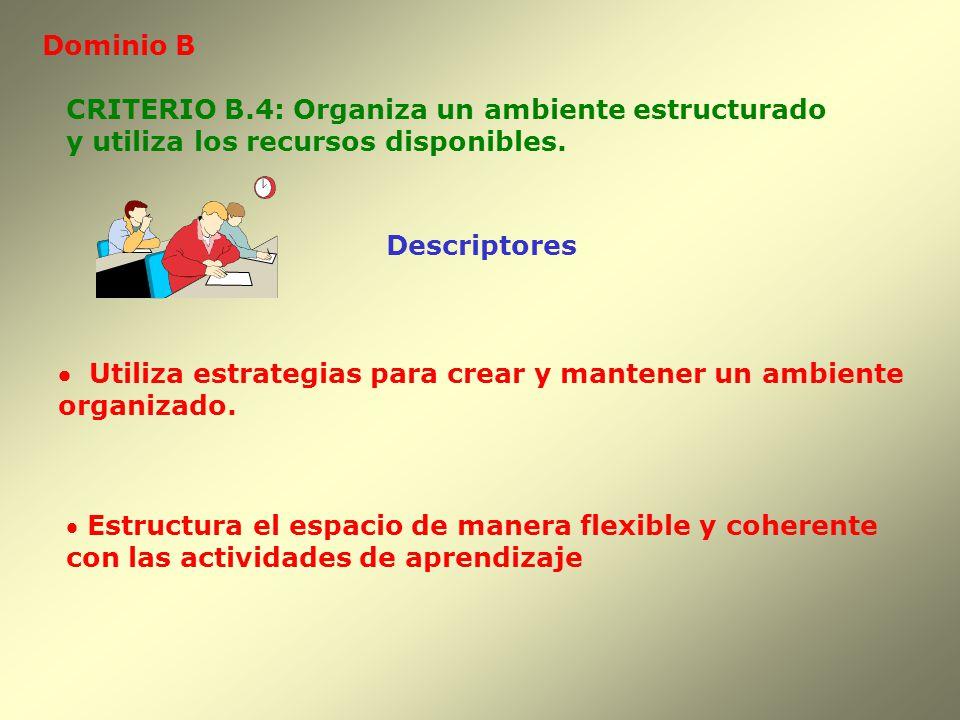 Dominio B Descriptores CRITERIO B.4: Organiza un ambiente estructurado y utiliza los recursos disponibles. Utiliza estrategias para crear y mantener u