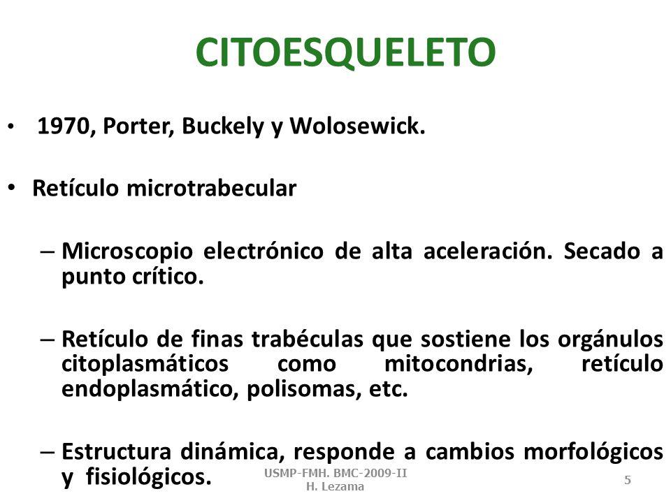 CITOESQUELETO 1970, Porter, Buckely y Wolosewick.