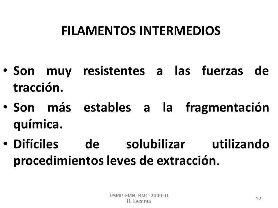 USMP-FMH. BMC-2009-II H. Lezama 56