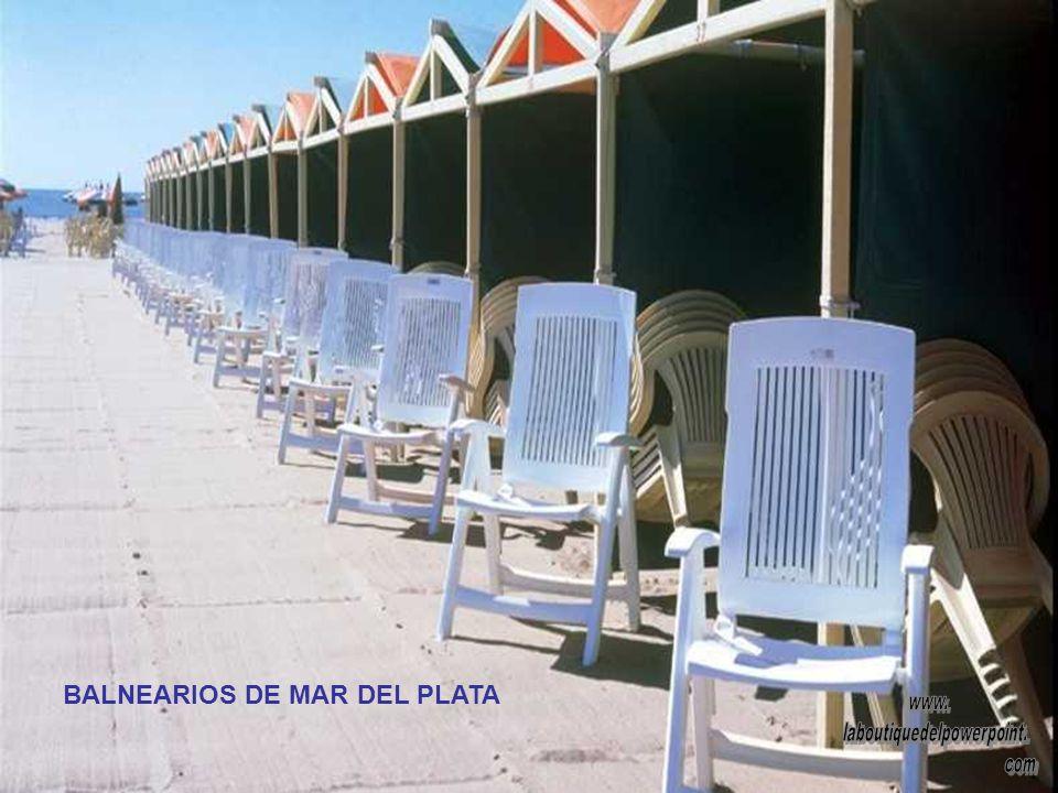 ICONO DE MAR DEL PLATA: EL LOBO MARINO