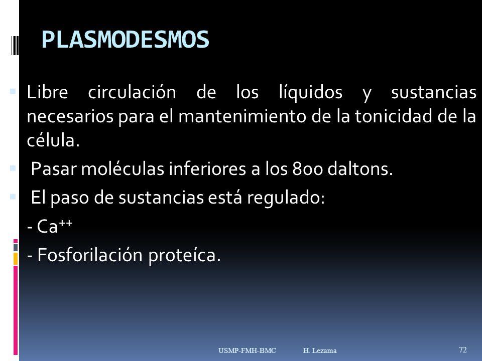 PLASMODESMOS Libre circulación de los líquidos y sustancias necesarios para el mantenimiento de la tonicidad de la célula.
