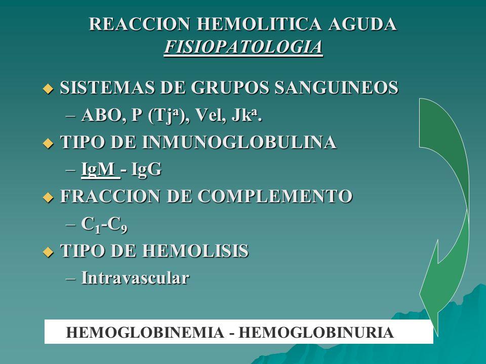 REACCION HEMOLITICA AGUDA FISIOPATOLOGIA La hemólisis dependerá de: La hemólisis dependerá de: El número y densidad de sitios antigénicos en el GR.