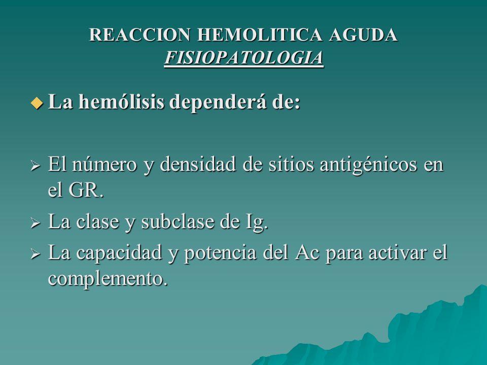 REACCION HEMOLITICA AGUDA FISIOPATOLOGIA FASESEVENTOCONSECUENCIA 1 Complejo Ag-AcActivación del C´ Síntesis de mediadores químicos 2 Complejo Ag-Ac-fagocito GR opsonizados, interactúan y activan fagocitos.