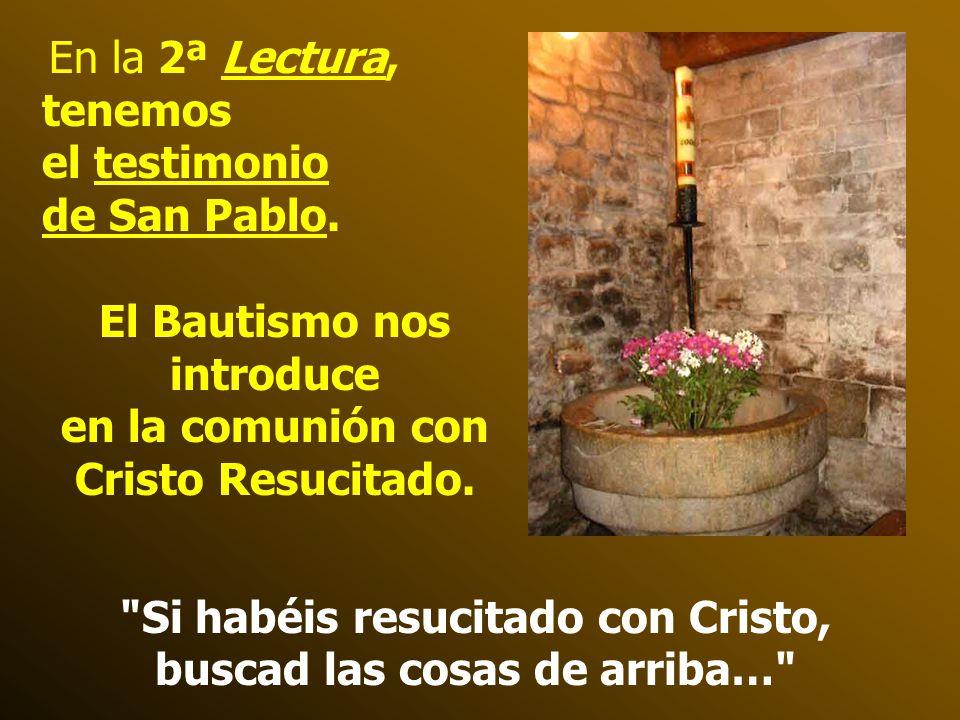 En la 2ª Lectura, tenemos el testimonio de San Pablo.