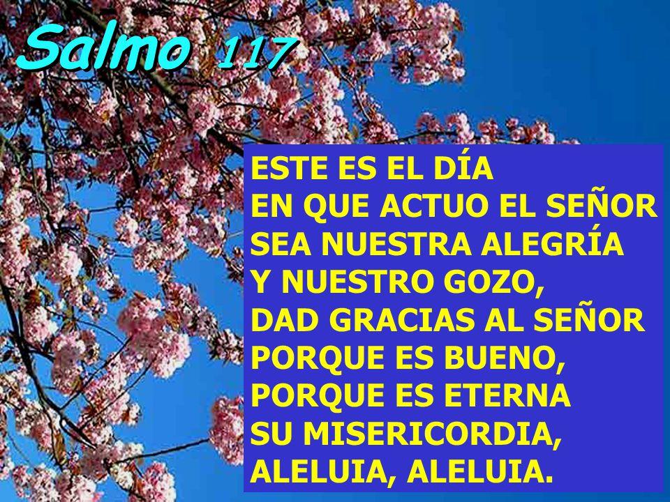 Salmo 117 ESTE ES EL DÍA EN QUE ACTUO EL SEÑOR SEA NUESTRA ALEGRÍA Y NUESTRO GOZO, DAD GRACIAS AL SEÑOR PORQUE ES BUENO, PORQUE ES ETERNA SU MISERICORDIA, ALELUIA, ALELUIA.
