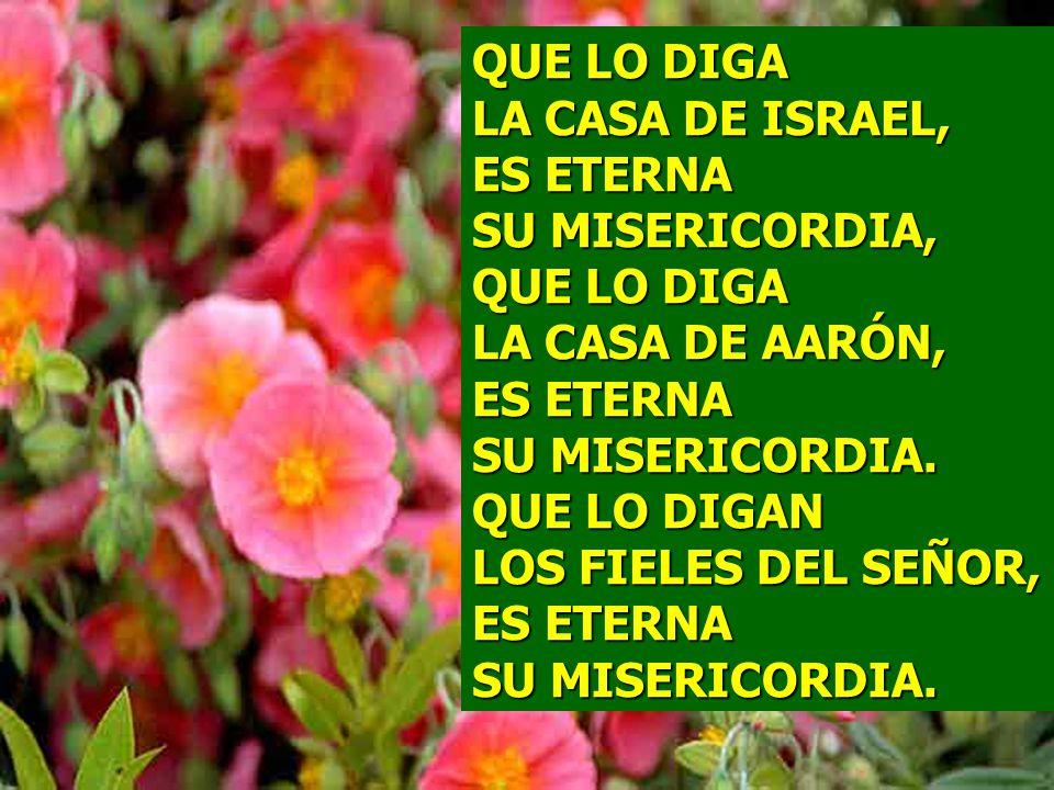 QUE LO DIGA LA CASA DE ISRAEL, ES ETERNA SU MISERICORDIA, QUE LO DIGA LA CASA DE AARÓN, ES ETERNA SU MISERICORDIA.