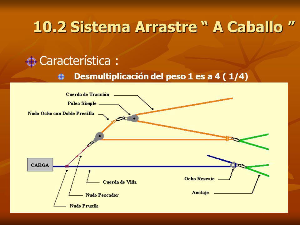 10.2 Sistema Arrastre A Caballo 10.2 Sistema Arrastre A Caballo Característica : Desmultiplicación del peso 1 es a 4 ( 1/4)