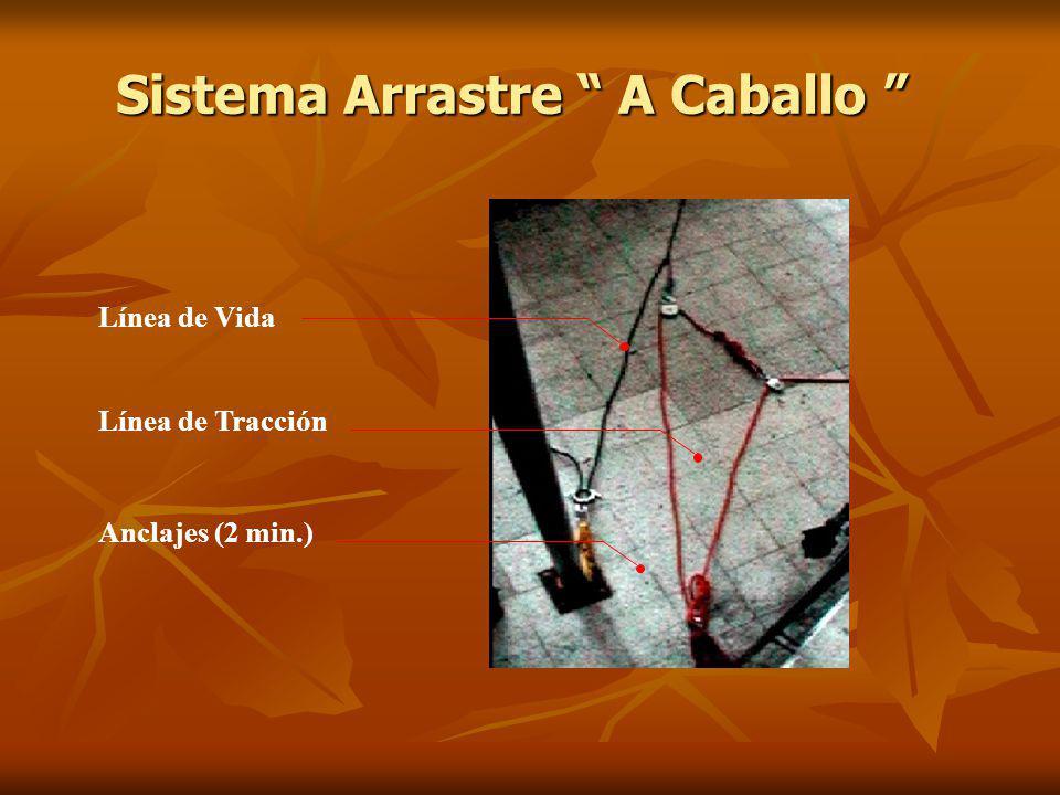 Sistema Arrastre A Caballo Sistema Arrastre A Caballo Línea de Vida Línea de Tracción Anclajes (2 min.)
