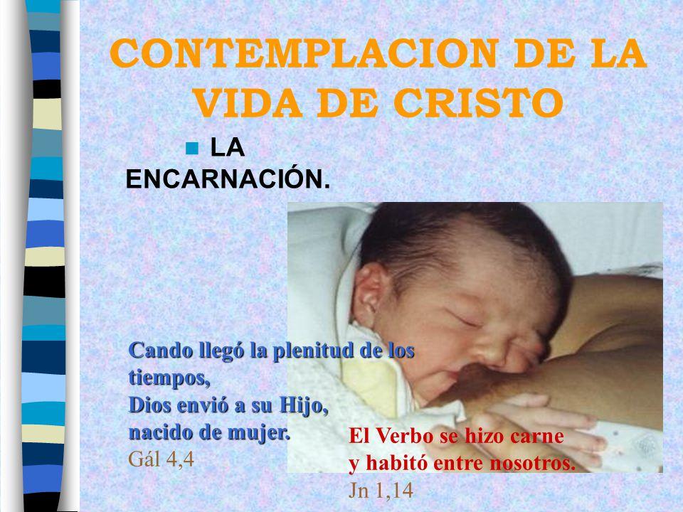 CONTEMPLACION DE LA VIDA DE CRISTO LA ENCARNACIÓN. Cando llegó la plenitud de los tiempos, Dios envió a su Hijo, nacido de mujer. Gál 4,4 El Verbo se