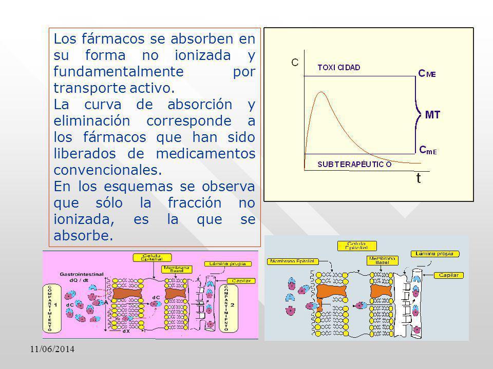 Los fármacos se absorben en su forma no ionizada y fundamentalmente por transporte activo. La curva de absorción y eliminación corresponde a los fárma