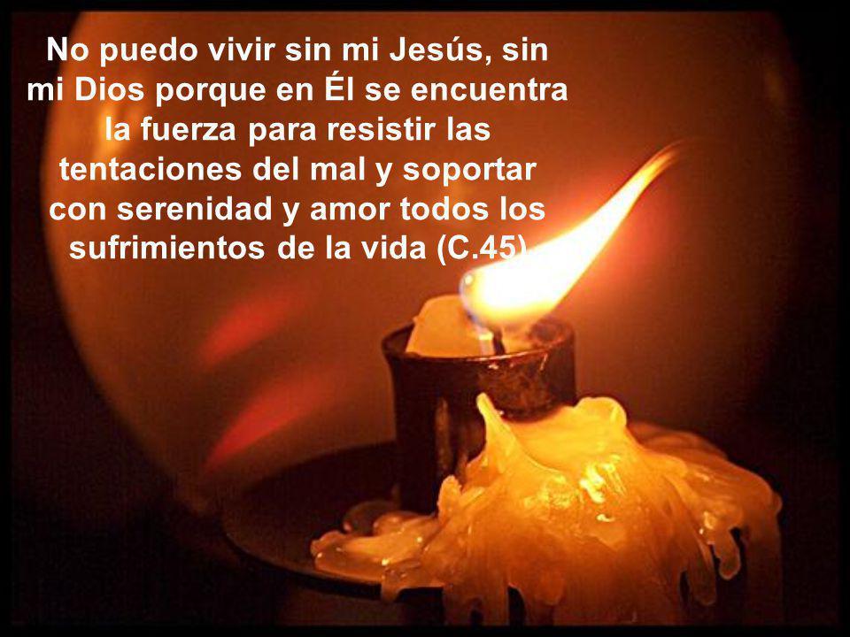 Si queremos que nuestra alma tenga vida, y vida en abundancia, vayamos con frecuencia a recibir los sacramentos, en particular la Santa Eucaristía
