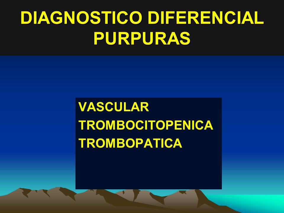 DIAGNOSTICO DIFERENCIAL PURPURAS VASCULAR TROMBOCITOPENICA TROMBOPATICA