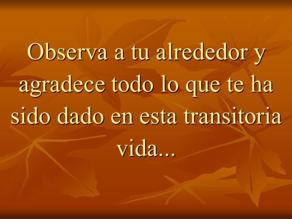 Observa a tu alrededor y agradece todo lo que te ha sido dado en esta transitoria vida...