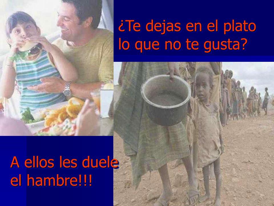 ¿Te dejas en el plato lo que no te gusta? ¿Te dejas en el plato lo que no te gusta? A ellos les duele el hambre!!!