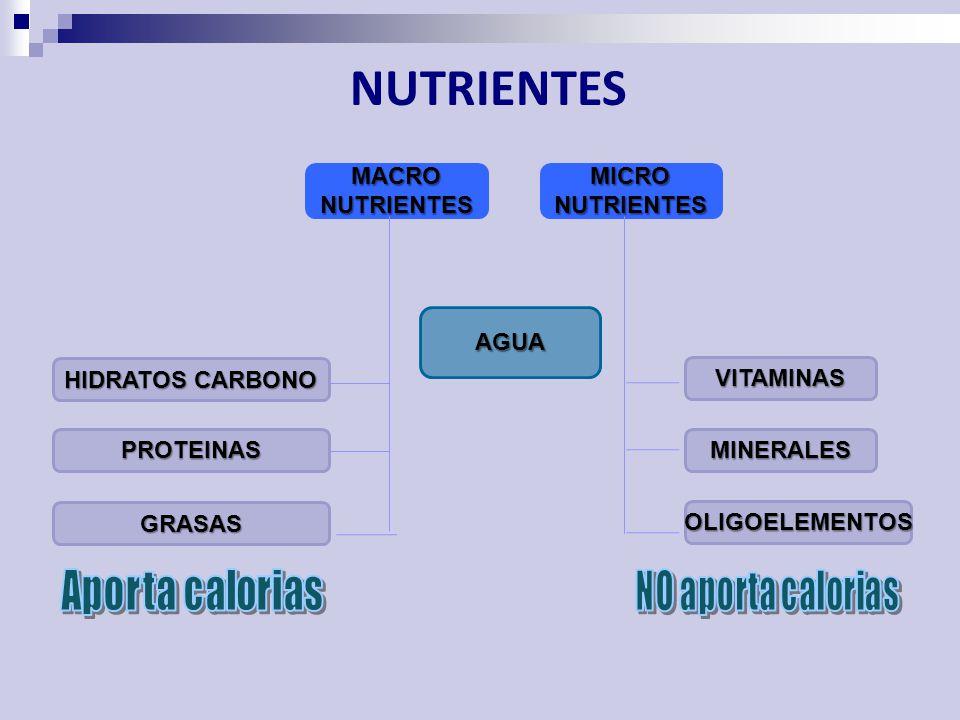 NUTRIENTES MACRONUTRIENTES HIDRATOS CARBONO PROTEINAS GRASAS AGUA MICRONUTRIENTES MINERALES VITAMINAS OLIGOELEMENTOS