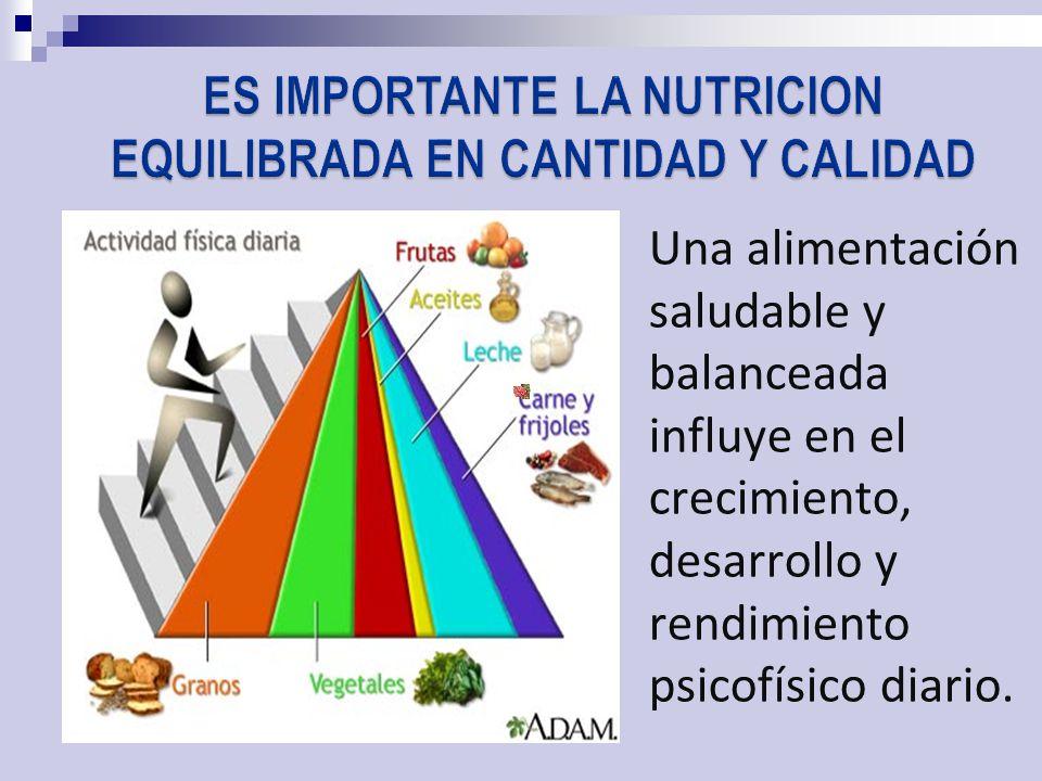 Una alimentación saludable y balanceada influye en el crecimiento, desarrollo y rendimiento psicofísico diario.