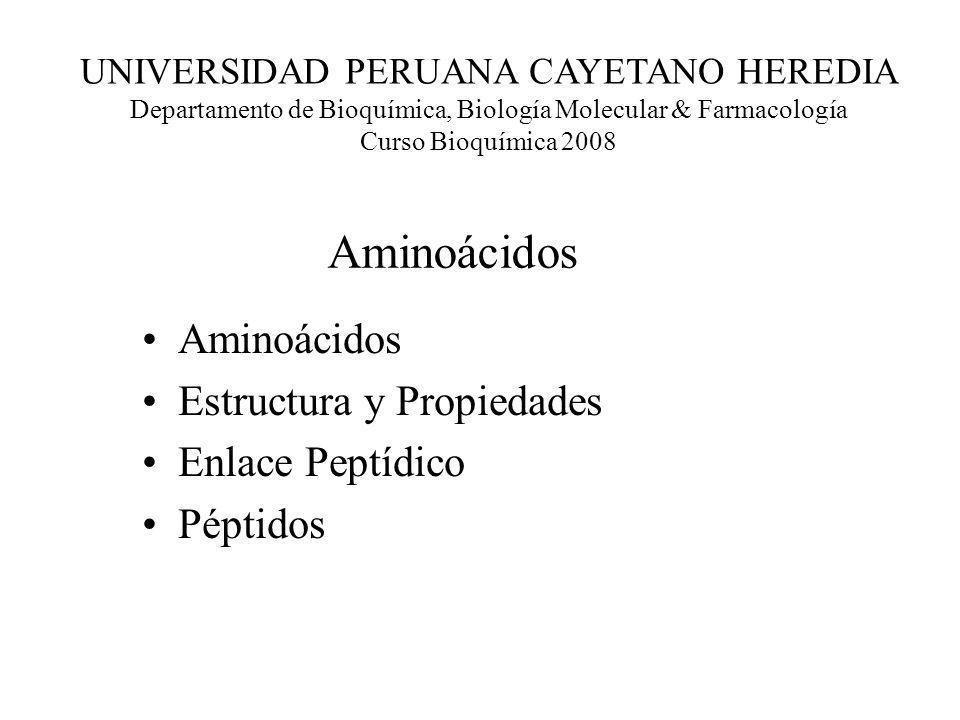 Aminoácidos Estructura y Propiedades Enlace Peptídico Péptidos UNIVERSIDAD PERUANA CAYETANO HEREDIA Departamento de Bioquímica, Biología Molecular & F